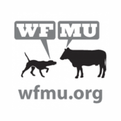 WMFU FM 91.1