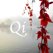 CALM RADIO - Qi