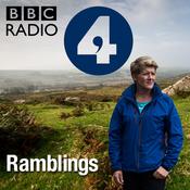 Ramblings