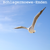 Schlagermöwe-Emden