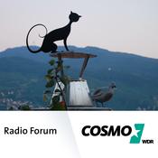 COSMO - Radio Forum Beitrag