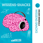 Wissens-Snacks