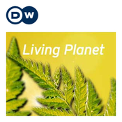 Living Planet | Deutsche Welle